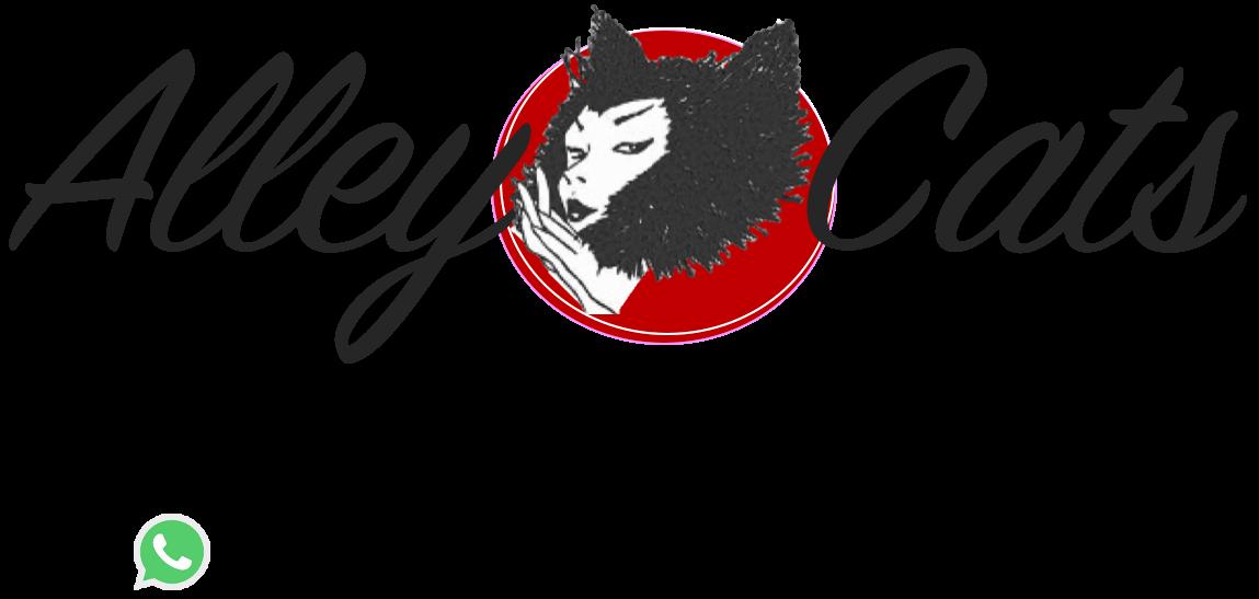 Alley Cats Beauty Studio
